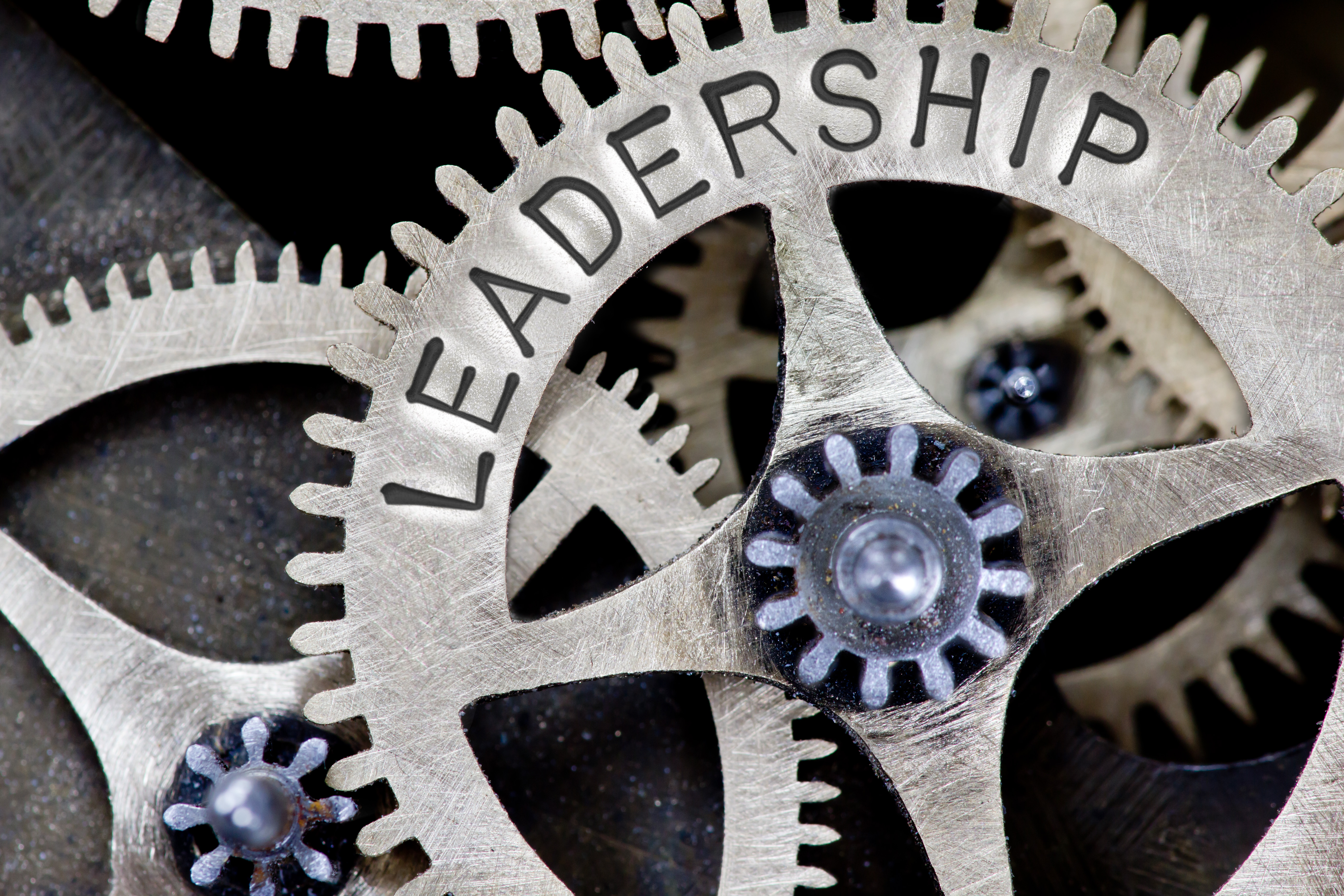 What Makes a Great Leader During a Time of Crisis