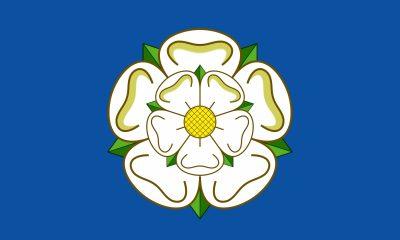 yorkshire-rose